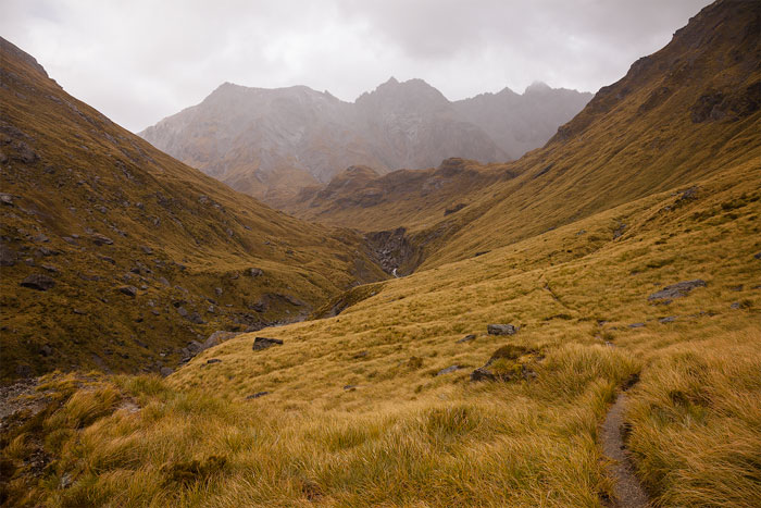 Mount Aspiring National Park, South Island, New Zealand